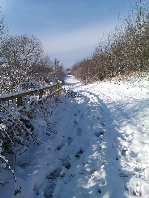 Airport trail in the snow no time for ironing - Woodlands swimming pool allestree ...