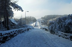 Winter snow 2013.