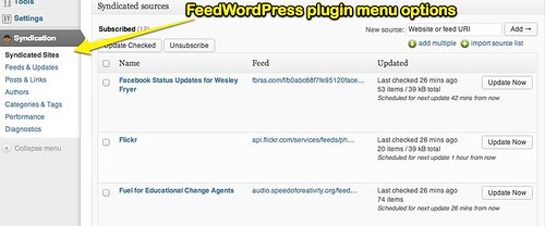 FeedWordPress plugin menu options