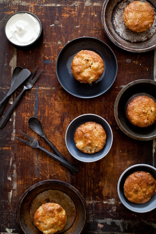 Apple Cake _ Southern Comfort Cookbook