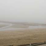 Foggy Third Beach