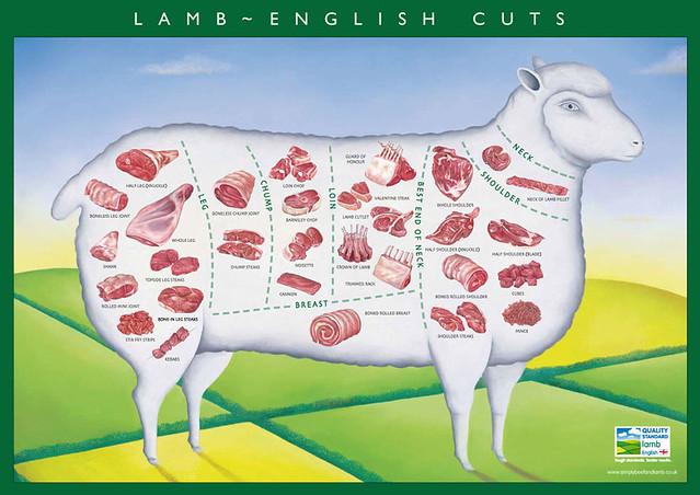 lamb_cuts eblex2