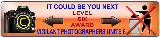 AwardL6.jpg