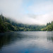 Morning fog over Umpqua river by JoeCollver