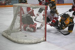 CIS Canada West Hockey Playoff Action