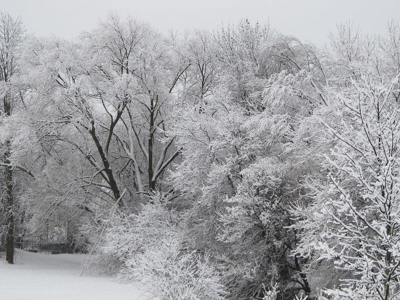 Wet Snow Oshawa Ont.
