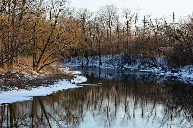 Late Winter Dupage River 1