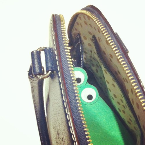 Crocodile in my bag