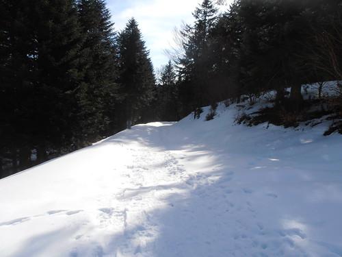 Col de Marie Blanque 133