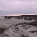 Assateague Island NSS in Maryland by David from Reisterstown