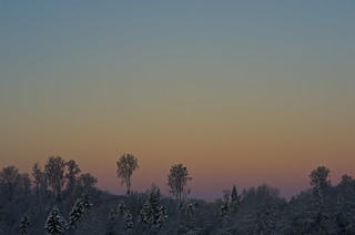 cold morning light