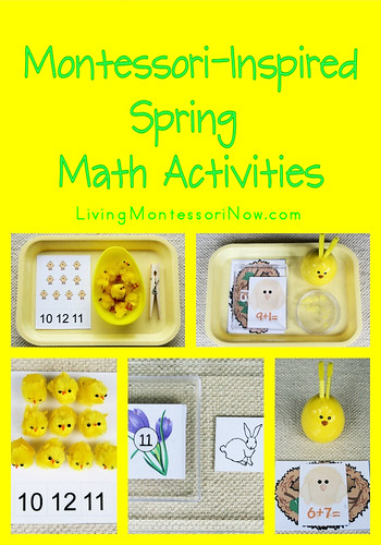 Making and Recording Caterpillar Observations {After ...
