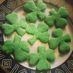 Sugar Shamrocks. We have icing, but I don't think they need it.