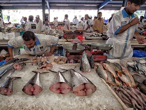 Dubai Fish Market #05