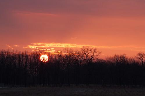 trees orange sun field sunrise frost splitrailfence