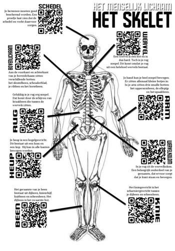 2013-03 > #QR menselijk lichaam - skelet
