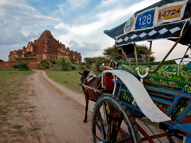Bagan Horse Cart, Dhammayangyi Paya