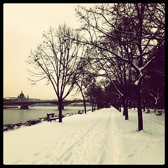 Went for a walk on Margaret Island. #budapest #hungary #travel #snow