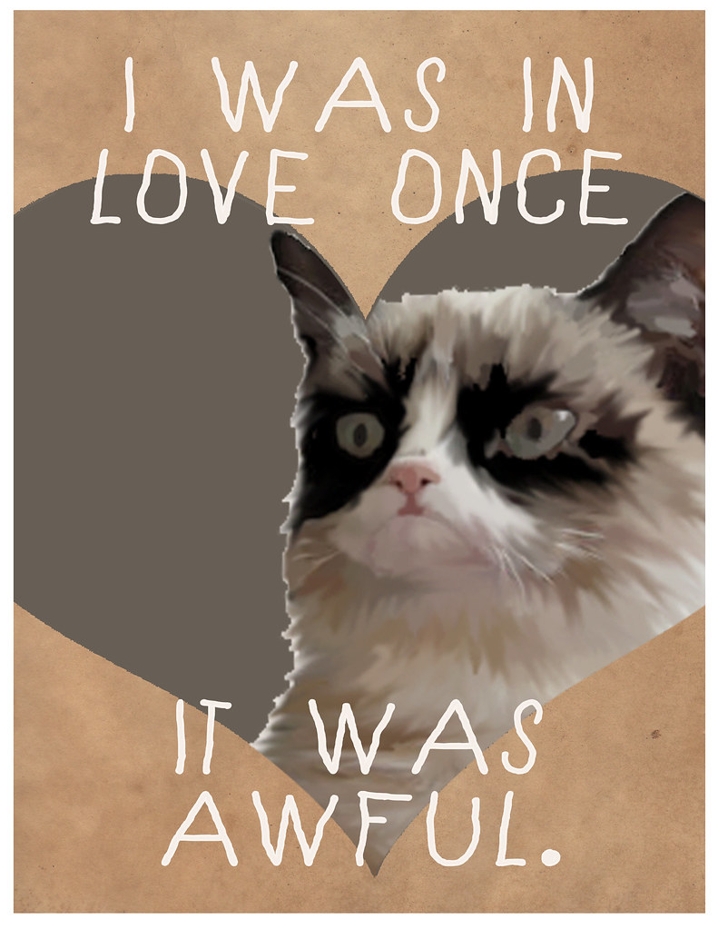 Cat Meme Valentines By Lazy Geometry I Was In Love Once I Flickr