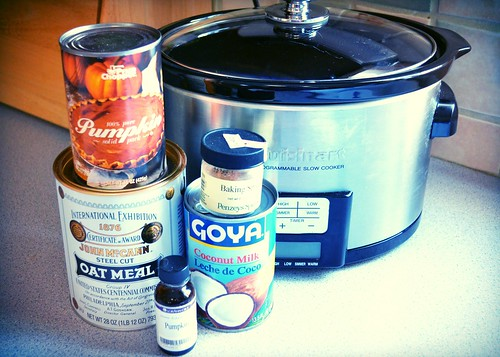 Making Pumpkin Oatmeal