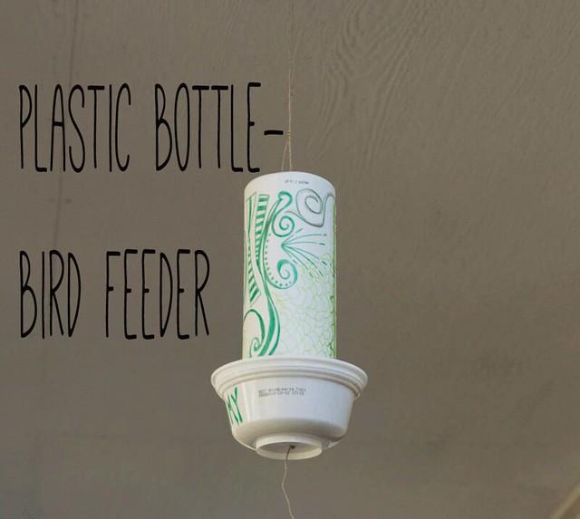bird-feeder3-(1-of-1)