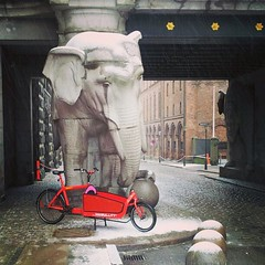 Two Danish icons. The Carlsberg elephants & the Bullitt. #copenhagen #carlsberg #bullitt #cargobike
