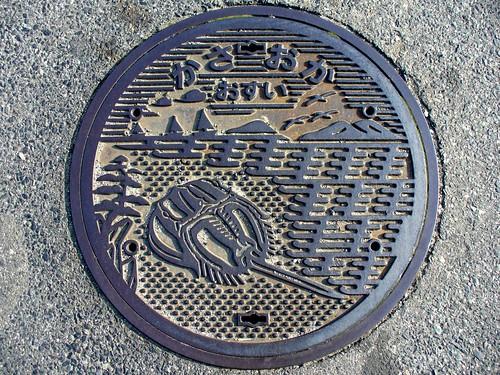 Kasaoka city Okayama pref, manhole cover (岡山県笠岡市のマンホール)