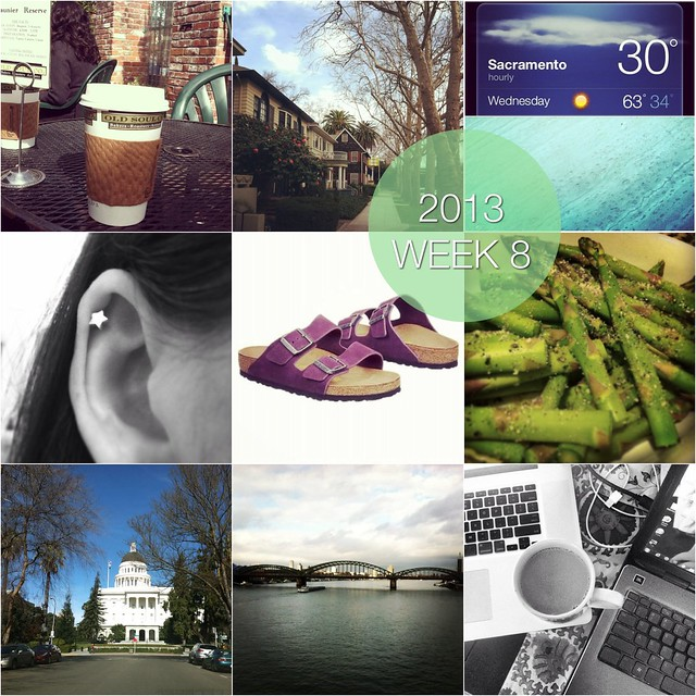 2013 in pictures: week 8