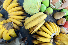 summer squash(0.0), plant(0.0), calabaza(0.0), cucurbita(0.0), cooking plantain(1.0), banana(1.0), yellow(1.0), produce(1.0), fruit(1.0), food(1.0), winter squash(1.0),