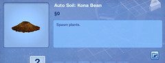 Kona Bean