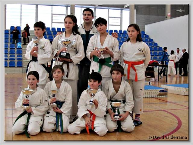 Camp. CyL karate Briviesca