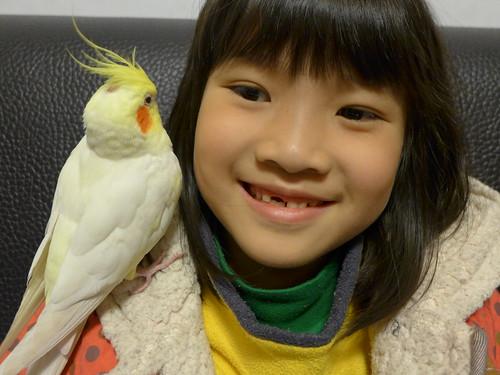粉圓鳥寶與荳荳