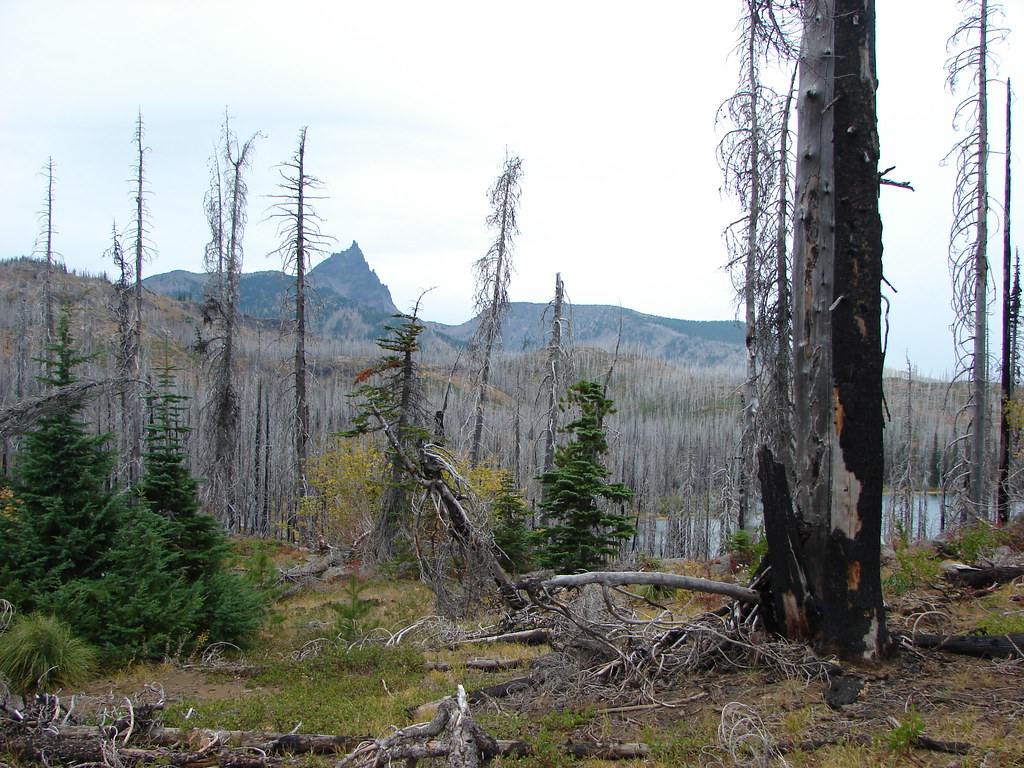 Three Fingered Jack and Square Lake