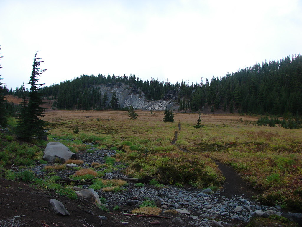 Pacific Crest Trail in Scott Meadow