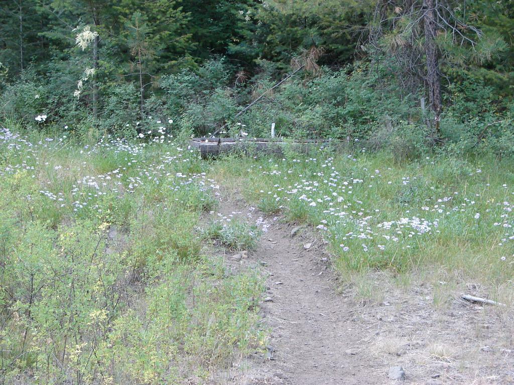 Twin Pillars Trail