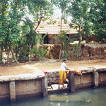 kerala_backwater_washing