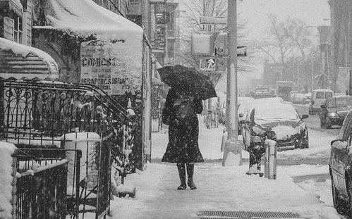 Snowy day in Brooklyn