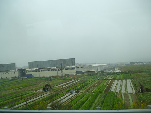Guangdong13-Guangzhou-Zhaoqing (8)
