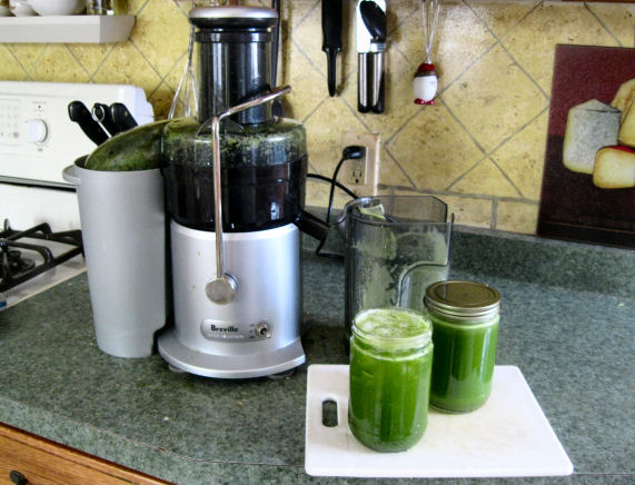 Green Juice Sick Fat and Nearly Dead
