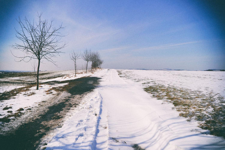 Querfeldein im Winter