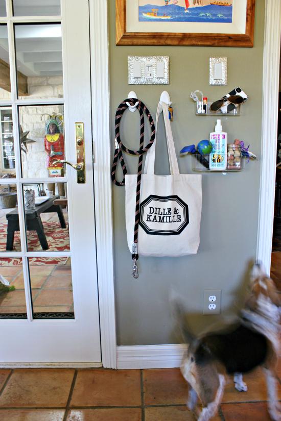 Hi Sugarplum | Organized Dog Station