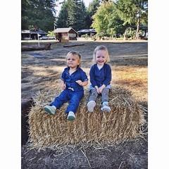 #cousins #littlemissmarlowe
