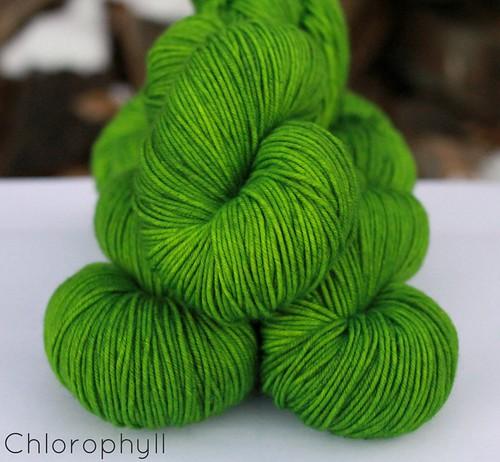 Chlorophyll name