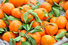 clementine, citrus, orange, kumquat, produce, fruit, food, tangelo, bitter orange, tangerine, mandarin orange,
