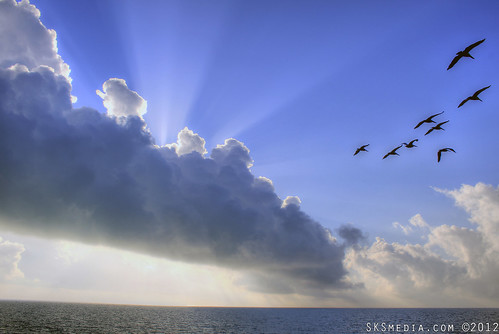 ocean birds clouds sunrise keys florida sunrays seabirds fluffyclouds keycolonybeach