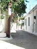 Kreta 2007-2 250