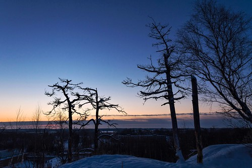 morning trees winter snow sunrise finland helsinki vanhankaupunginlahti january koskela 2013 canoneos7d adobelightroom4 me2youphotographylevel1