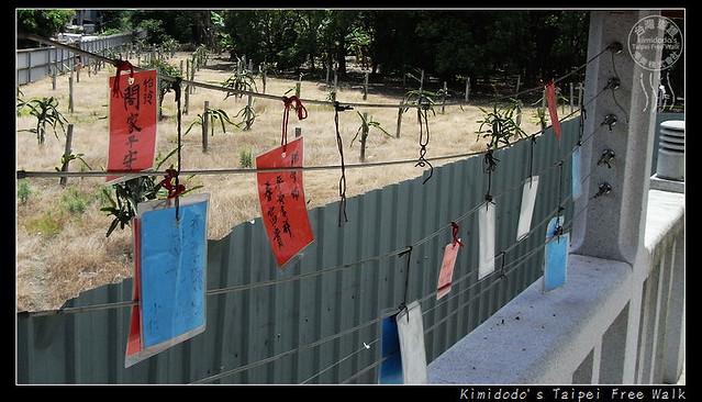 樹林敬字亭 (5)