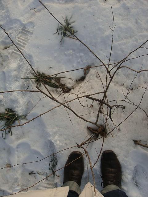 09 北方是雪地上的足音