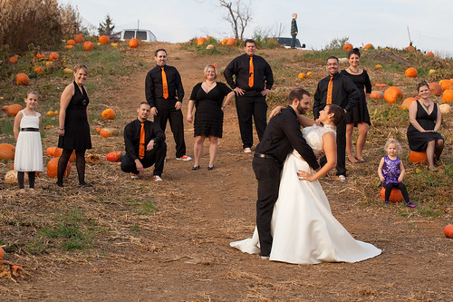 Bridal Party in the Pumpkin Patch